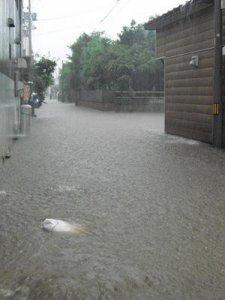 【大雨・洪水、大混乱の長井市!】:画像