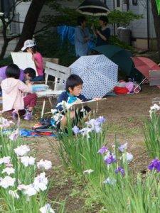 【雨の中のあやめ写生大会】:画像