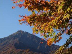 【長井の秋風景】:画像