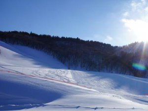 【道照寺平スキー場、21日オープン!】:画像