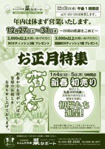 【2015年〜菜なポート〜お正月特集】:画像