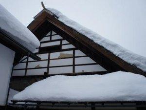【冬眠中の丸大扇屋】:画像