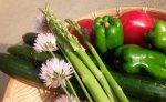 【電子野菜でエネルギーチャージ!】:画像