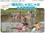 【「撞木川じゃぶじゃぶ生き物調査」においでよ〜】:画像