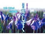 【長井の美味しい水「花のしずく」】:画像