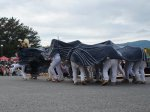 【第27回ながい黒獅子まつり〜稲荷神社(今泉)】:画像