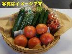 【豊かな自然で作られた電子野菜セット】:画像