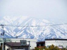 【春よ来い】:画像