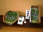 【行者菜料理でスタミナ回復!!】:画像