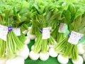 【冬の甘〜い野菜達】:画像