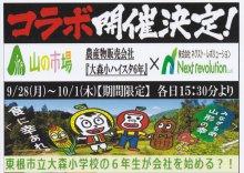 「大森小ハイスタ6年」による金の枝豆販売のお知らせ:画像