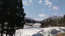 今日の葉山:画像