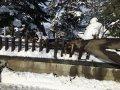 松が岬神社(松が岬公園):画像