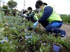いつか人も蝶もあつまる新名所に〔高畠町高校生ボランティアサークル地球(テラ)〕:画像