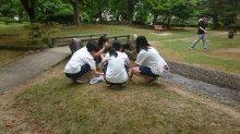 『ボランティア活動を3年連続で!!!』:画像