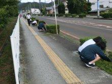 ボランティアで地域のチカラに!(長井高校1年生ボランティア活..:画像