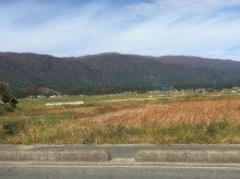 秋の葉山:画像