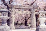 高房神社の石鳥居:画像