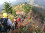 駒ケ岳より信濃沢への峰下り:画像
