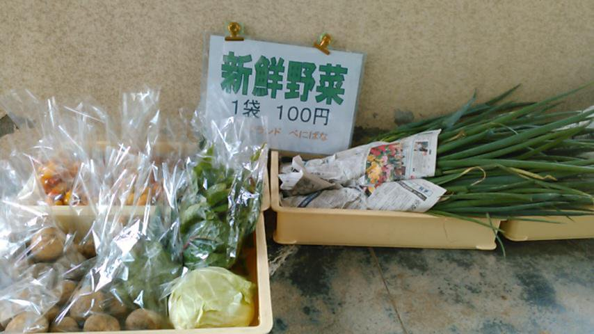 今 夏野菜が旬を迎えています:画像