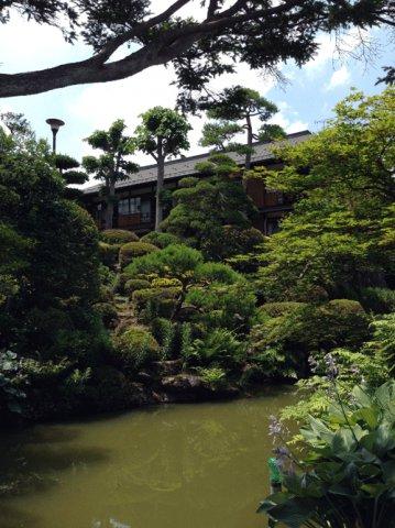 風情のある山城屋の日本庭園:画像