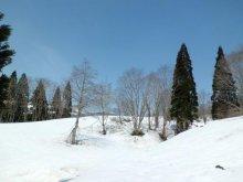 スノーシューで雪山体験&天然メープルシロップづくりを延期しま..:画像