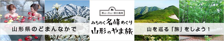 asahi_900_165.jpg