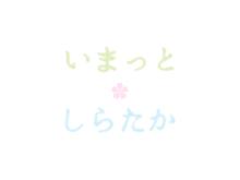 4月15日現在 古典桜群開花状況まとめ:画像