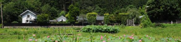 中山イメージ
