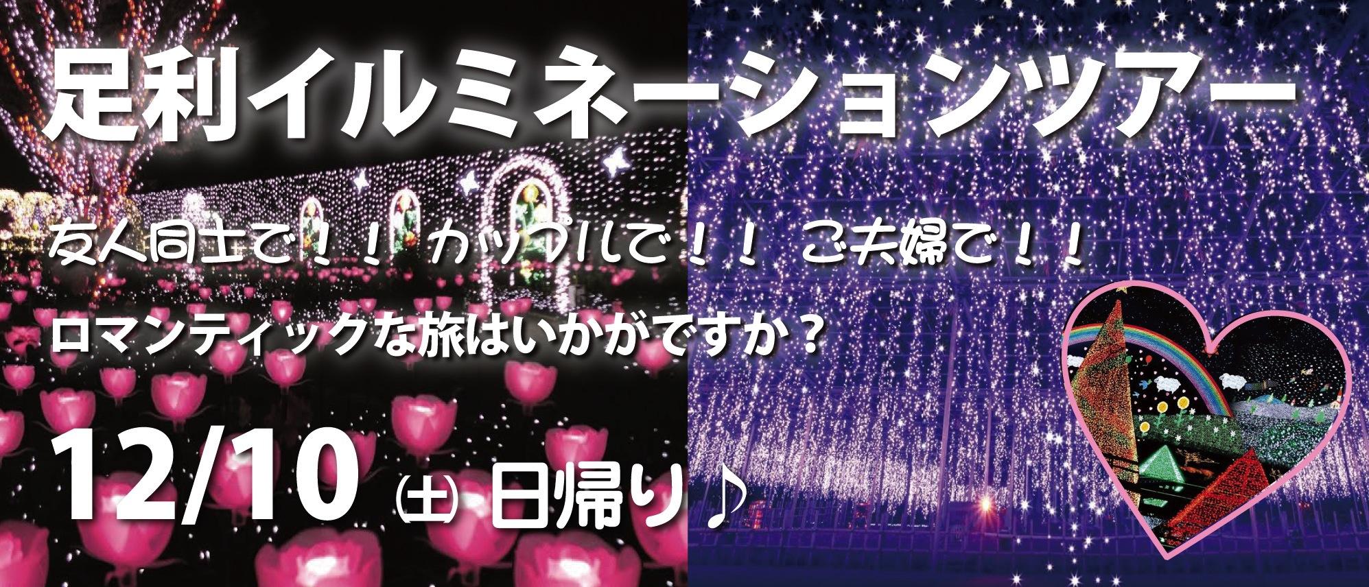 足利イルミネーションツアー 12/10(土)日帰り
