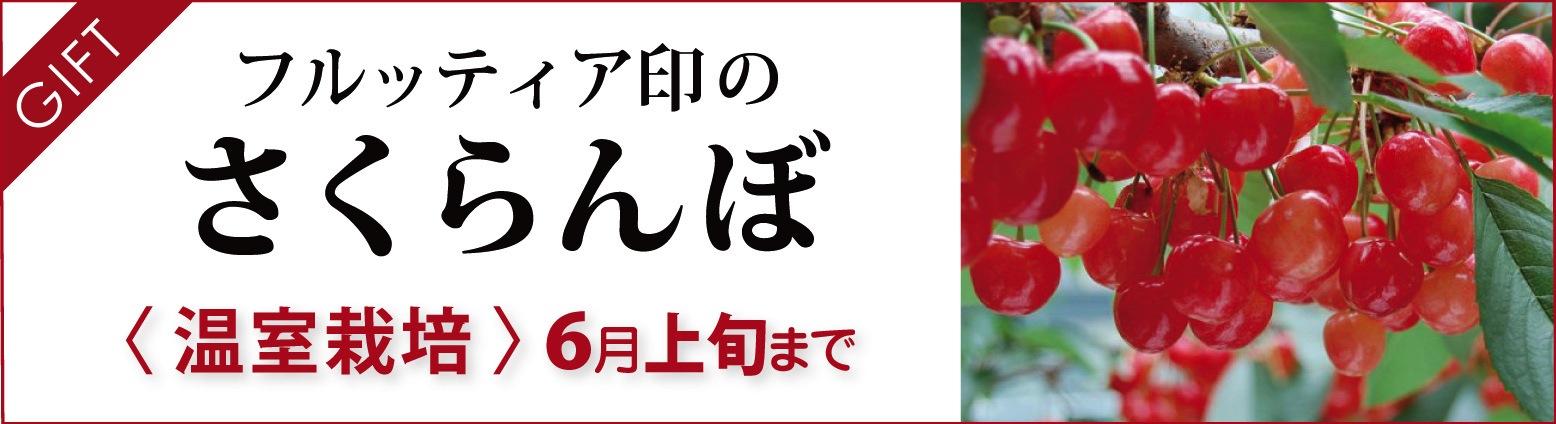 フルッティア印のさくらんぼ|温室栽培
