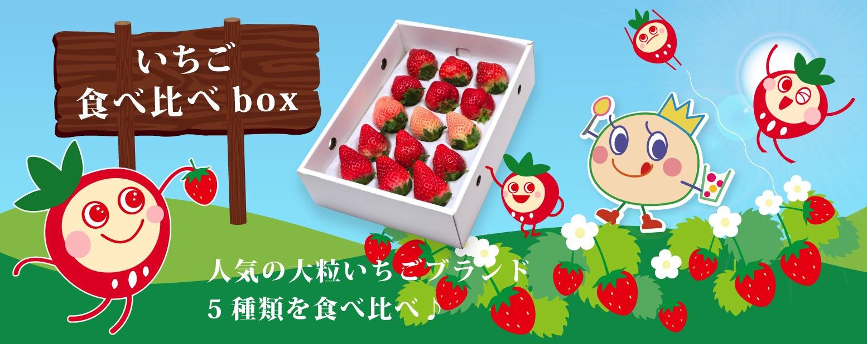 いちご食べ比べbox