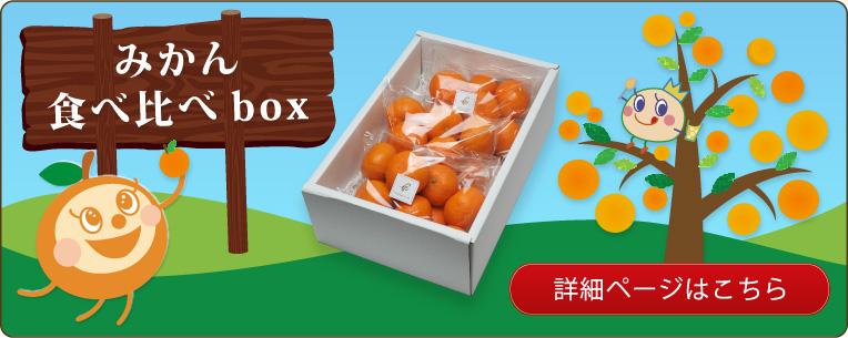みかん食べ比べbox|クリスマス/パーティー/内祝/お歳暮にどうぞ♪