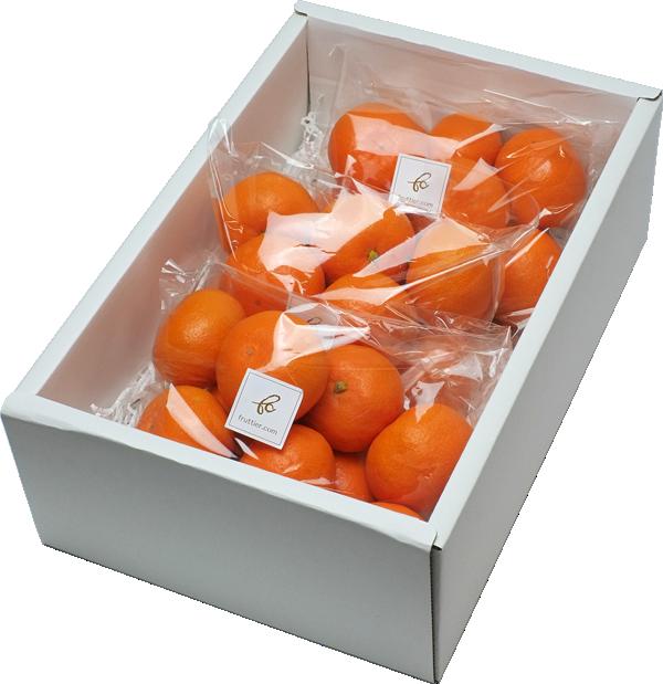 みかん食べ比べbox