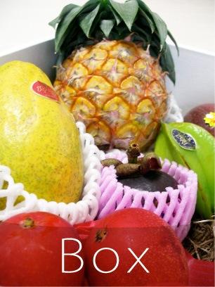 フルーツ食べ比べボックス