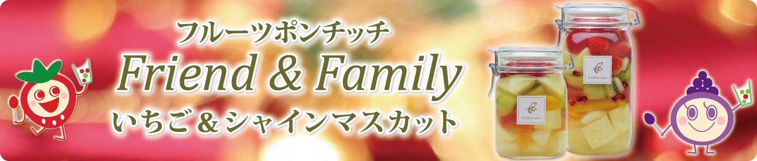 フルーツポンチッチFriend&Family〈いちご&シャインマスカット〉クリスマス/パーティー/内祝/お歳暮にどうぞ♪