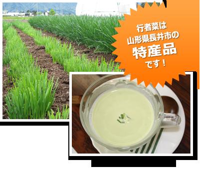 行者菜は山形県長井市の特産品です