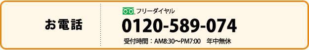0120-589-074