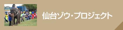 仙台ゾウ・プロジェクト