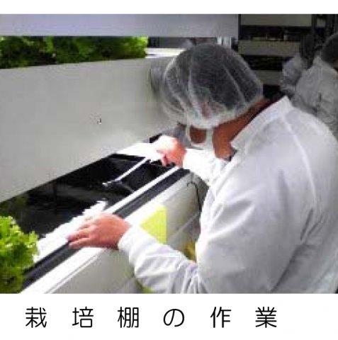 株式会社山形包徳:画像