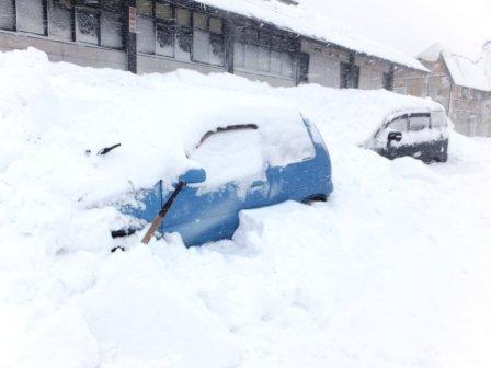 雪...:画像
