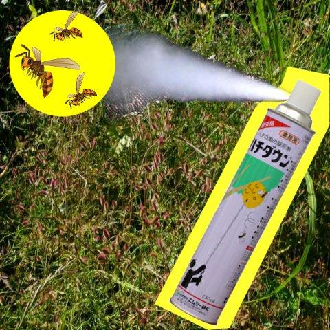 広角噴射のハチ用スプレー ハチダウン 730ml:画像