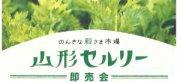 のんきな殿さま市場〜山形セルリー即売会〜:画像