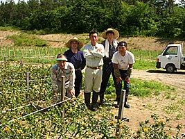 農業生産法人みどり農園:画像