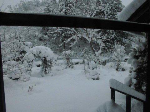 ★。★間違いなく雪が降っております・・・美蔵:画像