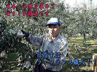 三鷹洋梨園|日本一の歴史を誇るラ・フランス農園(山形県高畠町)ブログ:画像