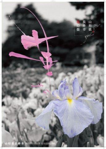 【花】新ポスターができました(長井市観光協会):画像