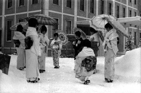 長井市役所等物語:画像