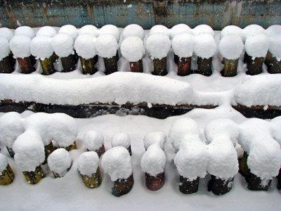 【雪の降る!降る!降る!まち】:画像