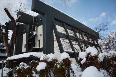【干支の寅にちなんで〜長井市立図書館】:画像